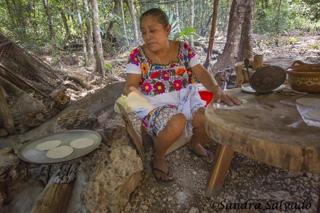 Cenote Zapote ruta de los cenotes