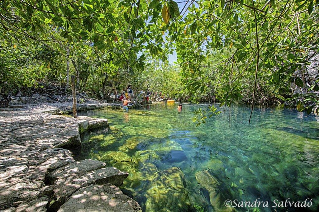 mejores cenotes Riviera Maya