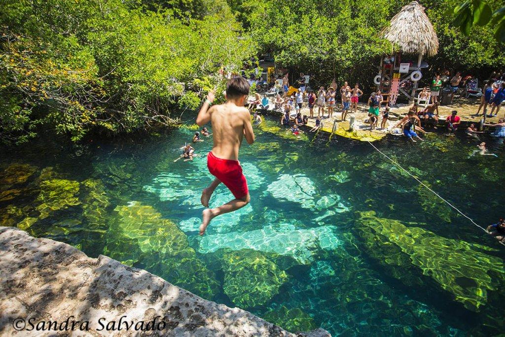 cenotes Playa del Carmen y Tulum