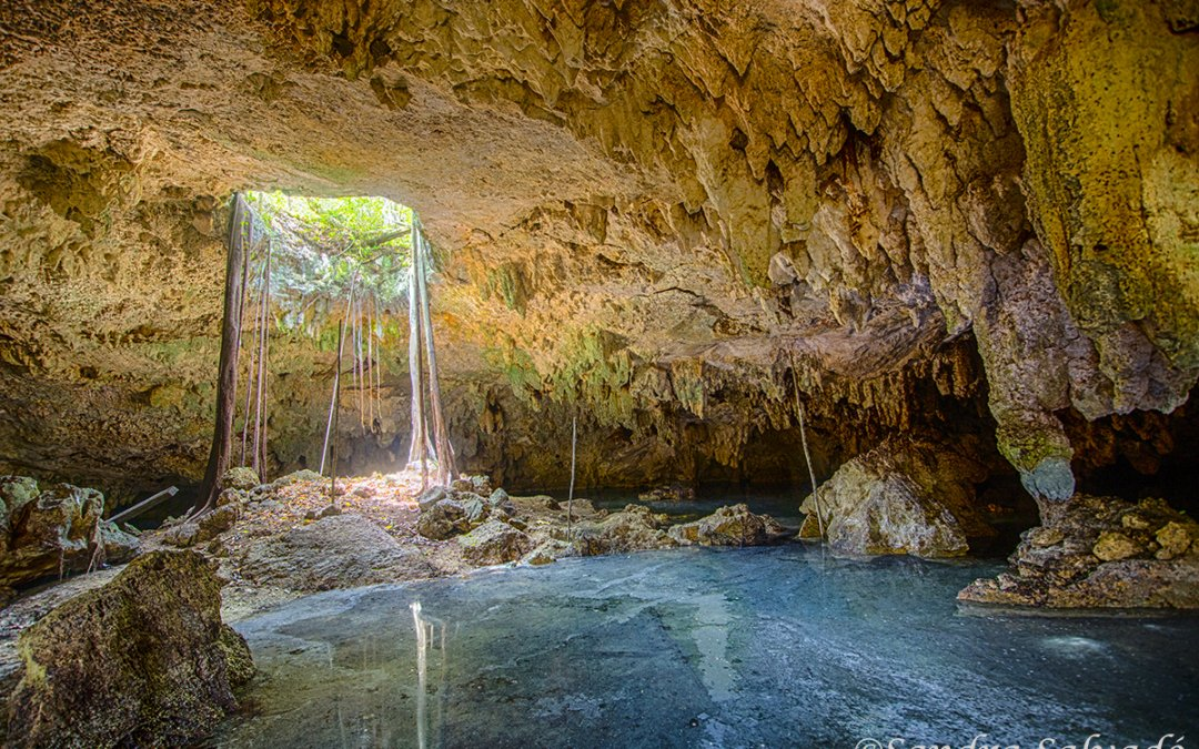 cenotes-Riviera Maya-Mexico