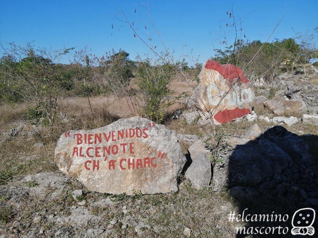 Hacienda Lepán y la magia del Cenote Ch'a Chaac 1