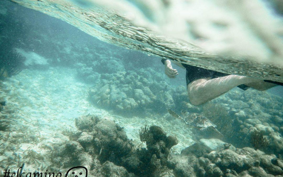 equipo snorkel en riviera maya