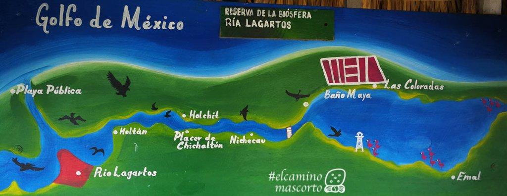 lagartos river tour