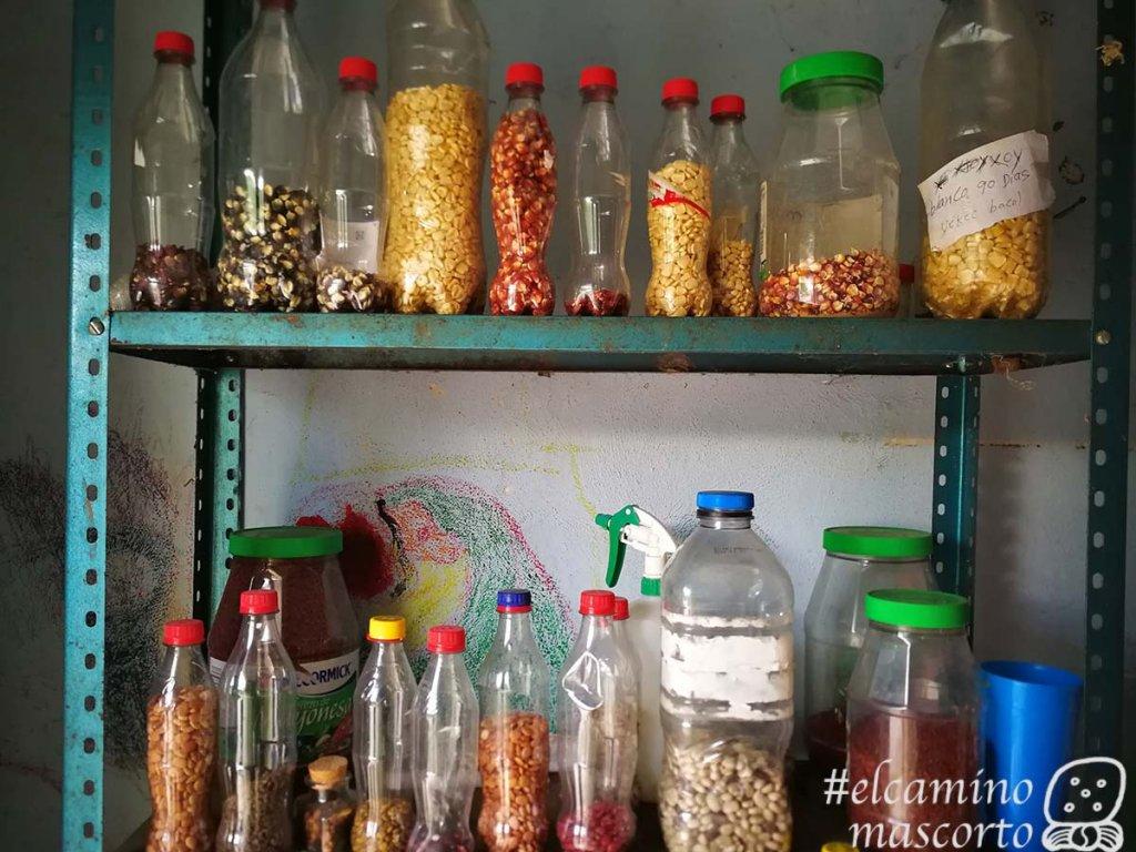 Cochinita pibil en Yaxunah y 9 experiencias más 9