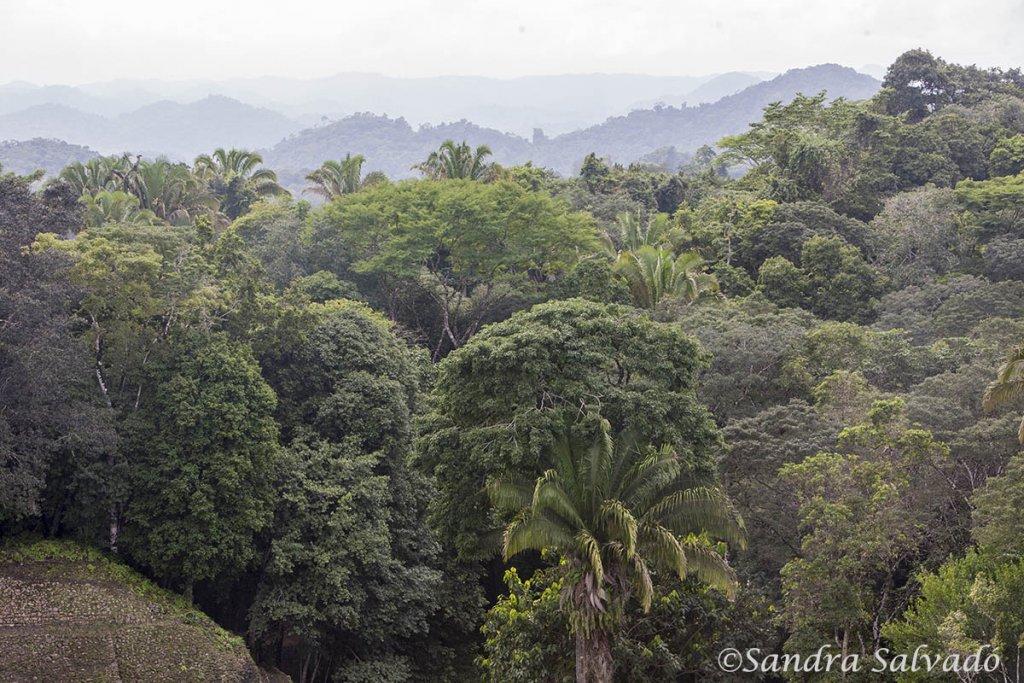 Caana Caracol Belize