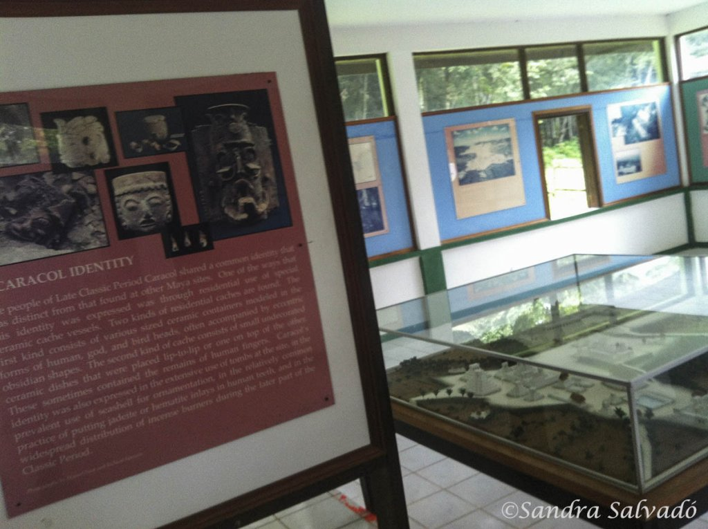 museo Caracol Belice