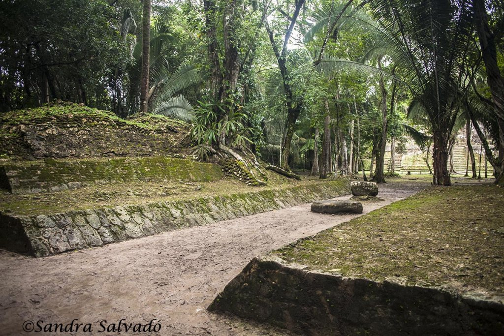 How to get to the archaeological zone of Lamanai 2